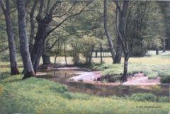trapezaroff - Petit ruisseau en Bourgogne (4P)